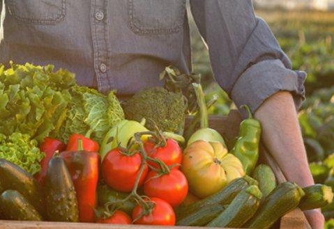 衛生福利部於109年5月14日預告 修正食品添加物規格檢驗